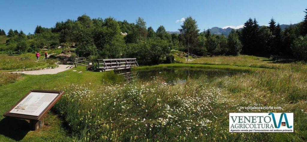 Giardino Botanico - Pro Loco Fregona
