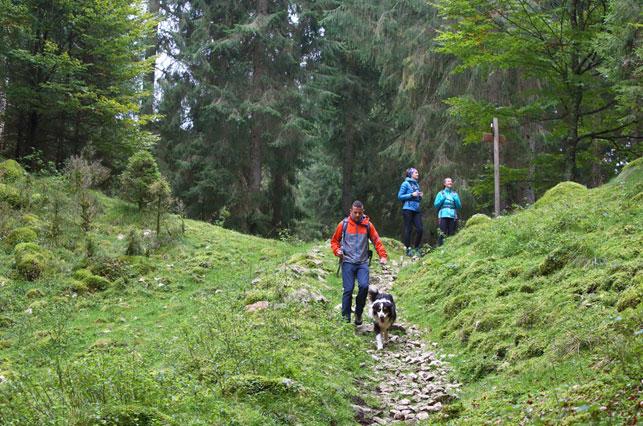 Escursione del Cansiglio - Pro Loco Fregona