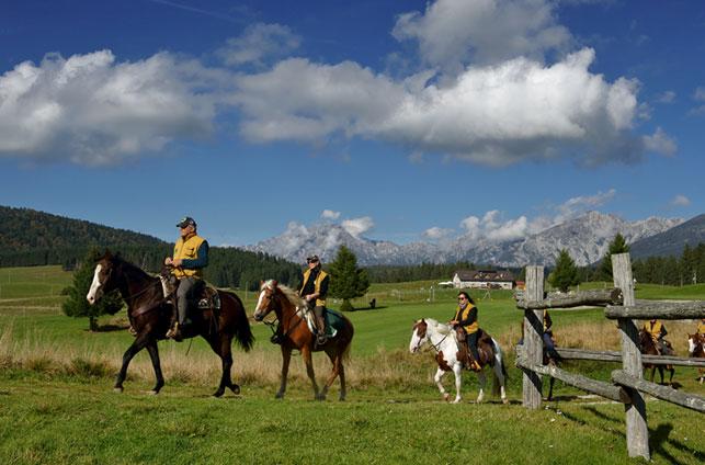 Foresta del Cansiglio a cavallo - Pro Loco Fregona