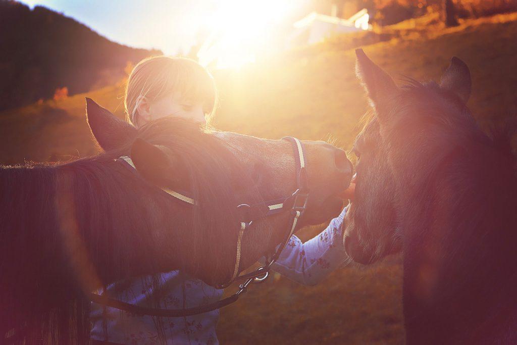 Escursioni outdoor - Cavallo - Pro Loco Fregona