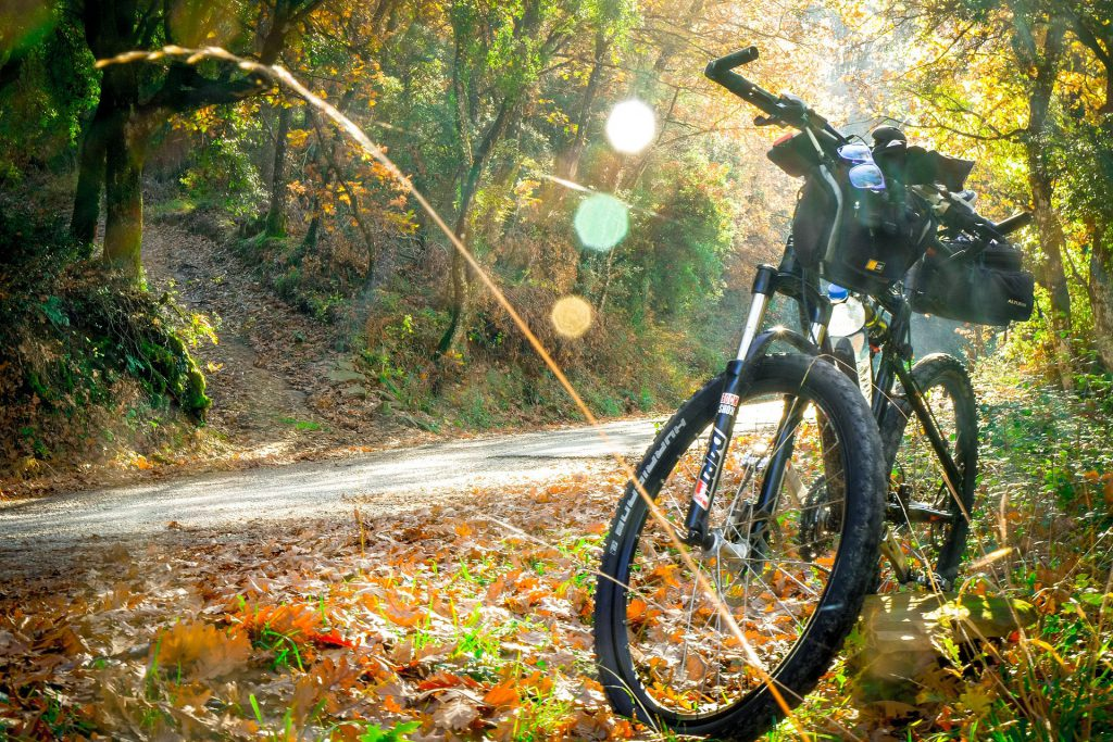 Escursioni outdoor - Bici - Pro Loco Fregona